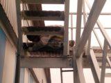 подсобные рабочие на стройку
